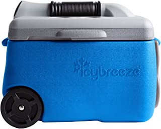 IcyBreeze Cooler Chill Package | No Battery, Direct Power Unit | Ultimate Stationary Package