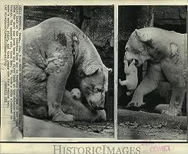 Best memphis zoo photos Reviews