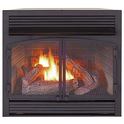 ProCom Heating Dual Fuel Ventless Fireplace Insert - FBNSD400RT-ZC