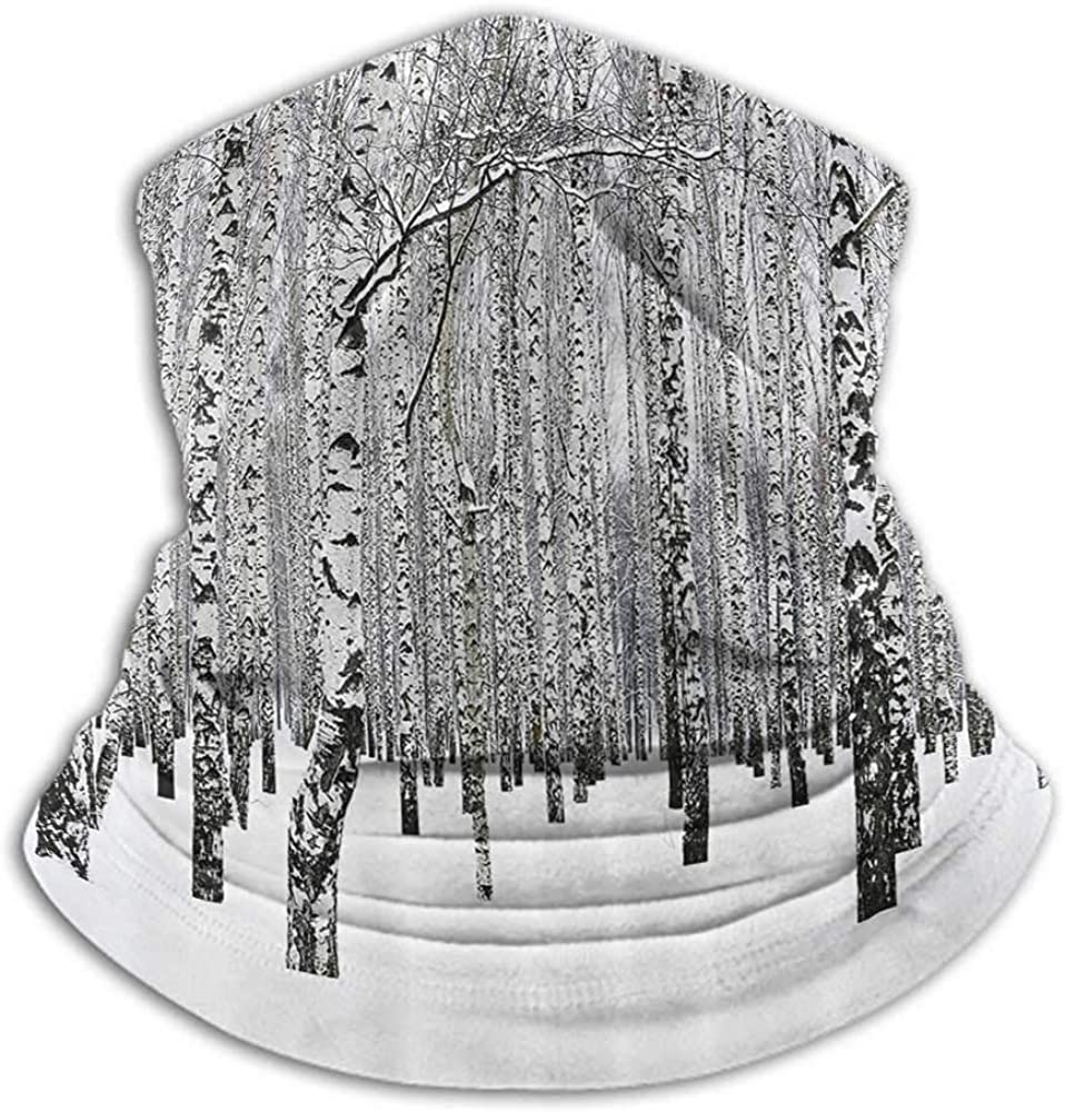 Bandanas for Men Winter Decorations Cold Weather Face Cover Winter Birch Grove in Forest with Leafless Tree Branches Nature Image Brown White