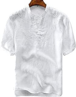 Men's Retro Frog Button V-Neck Embroidery Linen Henley Shirts Short Sleeve