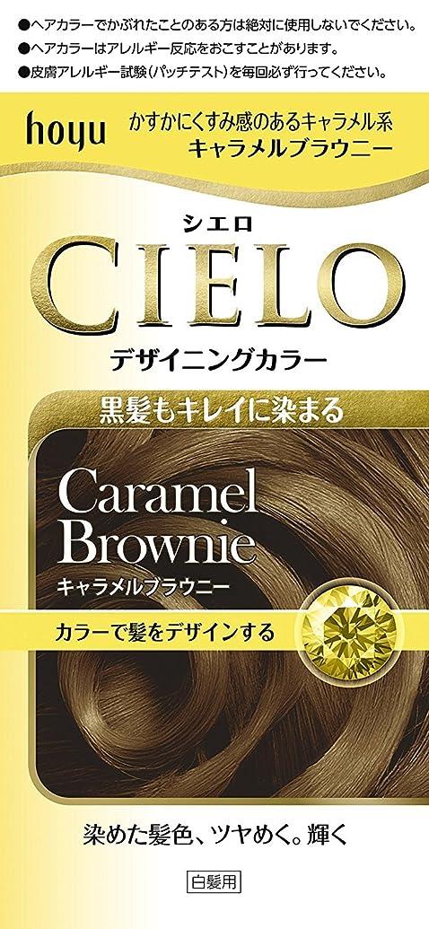 正統派畝間唇ホーユー シエロ デザイニングカラー (キャラメルブラウニー)×6個