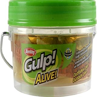 Berkley Gulp! Alive! Shrimp Assortment, 3in | 8cm, Soft Bait - 3in | 8cm