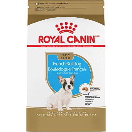 Amazon Com Royal Canin French Bulldog Puppy Breed Specific Dry Dog Food 3 Pounds Bag Pet Supplies