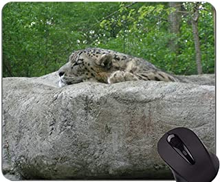 Gaming Mouse Pad Custom,Snow Leopard Mouse Pad With Stitched Edge