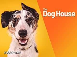 Dog House, The Season 2