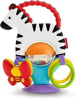 Fisher-Price Activity Zebra, Multicolor