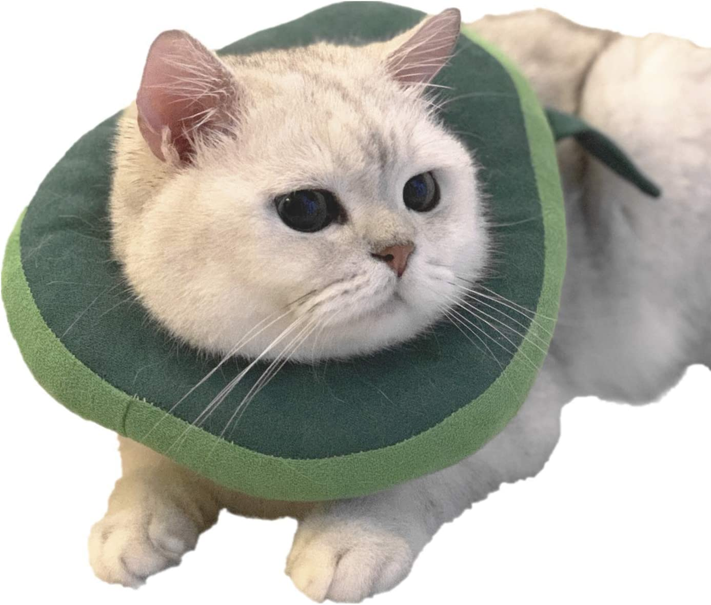USAMS Adjustable Cat Recovery OFFicial store Collar Neck Ultra-Cheap Deals Surge After Cute Cone