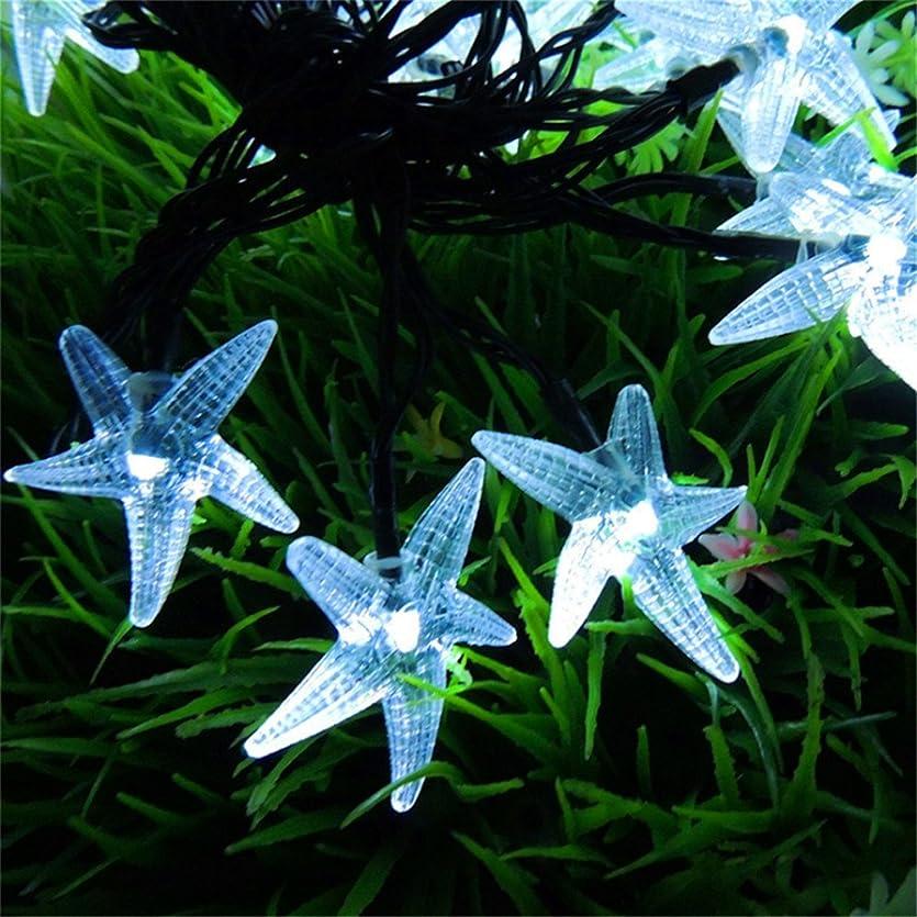 次インスタンス引っ張るソーラーストリングライト、SIMPLE DO LEDライト イルミネーション クリスマス パーティー 防水 省エネ 環境に優しい 使いやすい カラフル(ホワイト)