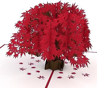 Lovepop 日本枫树弹出式卡、3D 卡、树卡、自然卡、折叠卡、生日卡