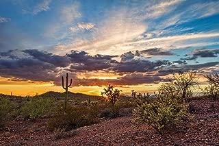 Colorful Sonoran Desert Sunset with Saguaro Cactus Photo Photograph Cool Wall Decor Art Print Poster 36x24