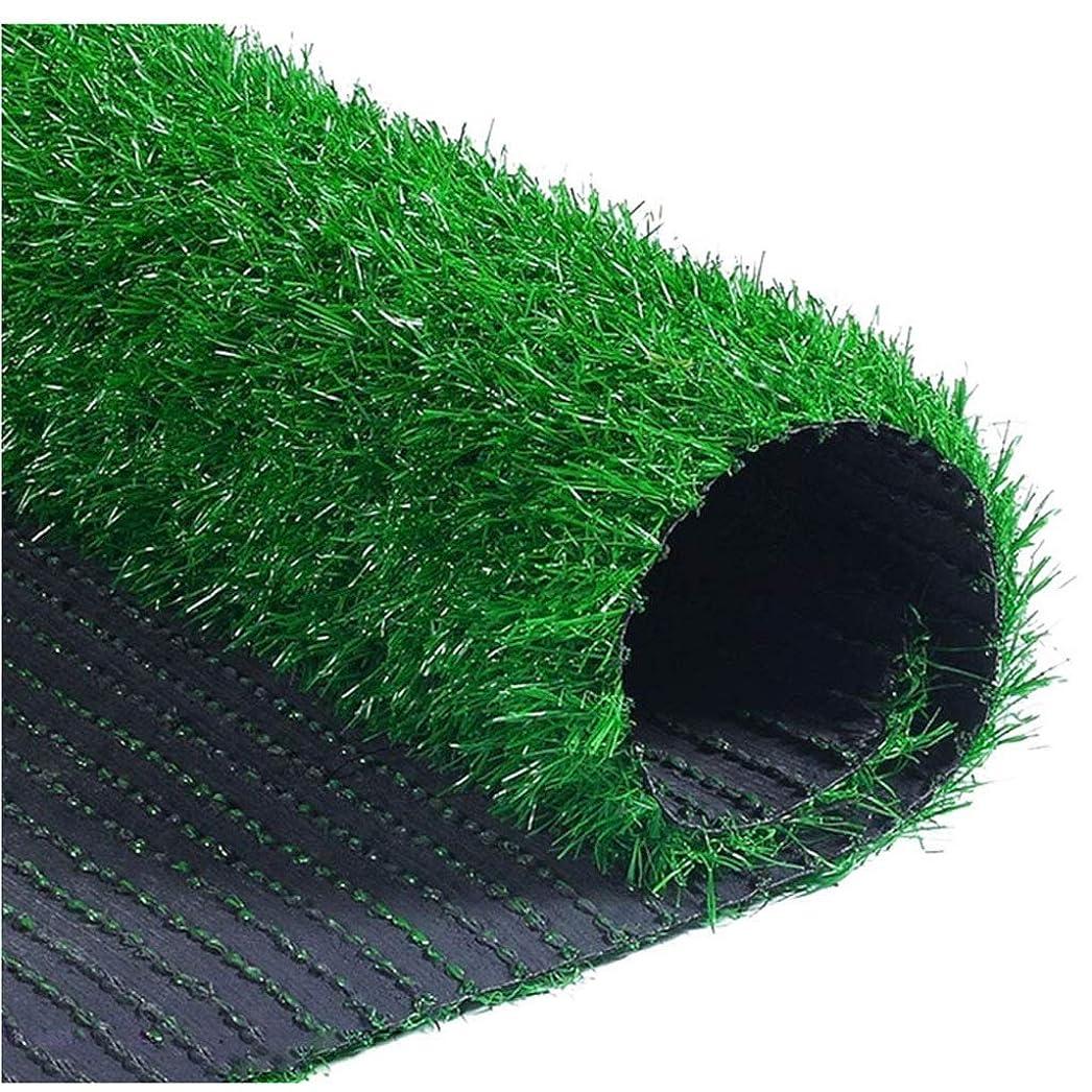 確立しますパフとしてWJ 人工芝カーペットプラスチック幼稚園偽芝シミュレーション芝生屋内バルコニー屋根暗号化屋外装飾 (Color : T 1.5cm, Size : 2*2m)