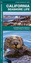 Best california coastal birds field guide Reviews