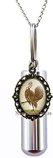 Yijianxhzao Turkey Cremation URN Necklace,Christmas Turkey,Festive Jewellery,Novelty, Turkey Charm,Turkey URN,Gift for Turkey Keeper,BV297