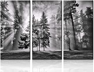 Natural Landscape Wall Art Paintings: Photographic Artworks Dark Tree line with Foggy Misty Forest Pine Print on Wrapped Canvas for Decoration, Multi-Piece Image Wall Art for Living Room(40''x60'')