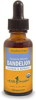 dandelion supplement for dogs