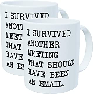Pack of 2 – I survived another meeting that should have been an email – 11OZ..