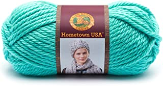 Lion Brand Yarn 135-112 Hometown Yarn, Miami Sea Foam (1 Skein)