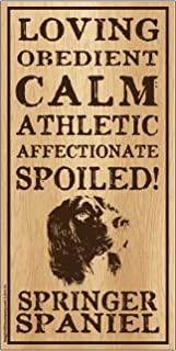 "Imagine This Springer Spaniel""Spoiled!"" Wood Sign"