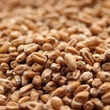 Weyermann Pale Wheat Malt - 1 LB, Crushed