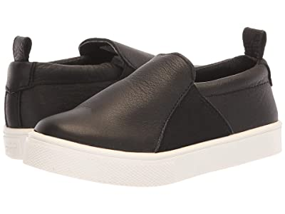 Freshly Picked Slip-On Sneaker (Toddler/Little Kid) (Black) Kid