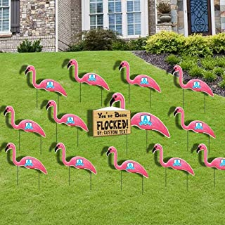 flamingo flocking fundraiser