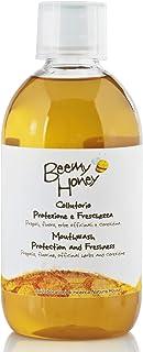 Propolis Mundwasser 500 ml Beemy Honey
