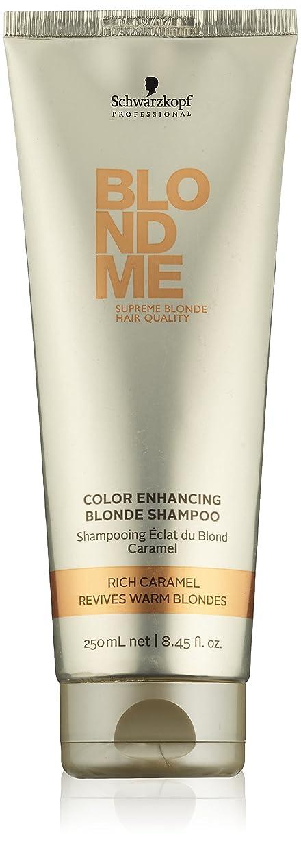 藤色私のトンネルシュワルツコフ Blondme Illumi Lights Shampoo (For Highlighted Blondes) 250ml [海外直送品]
