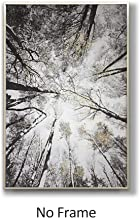 Best looking up at trees art Reviews