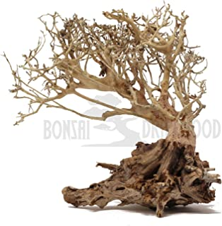 Bonsai Driftwood Aquarium Tree on Rock (8 Inch) Natural, Handcrafted Fish Tank Decoration | Helps Balance Water pH Levels, Stabilizes Environments | Easy to Install