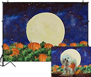 Best great pumpkin halloween decorations Reviews