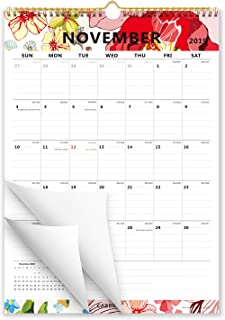 Cabbrix 2020 Monthly Wall Calendar, Ruled Blocks, Vertical, Colorful, 17 x 12 Inches, Runs from Now through December 2020