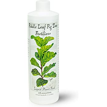 Fiddle Leaf Fig Tree Fertilizer (16 oz) Ficus Plant Food | Improves Leaves and Branches | Potted Indoor Trees/House Plants Treatment by Aquatic Arts