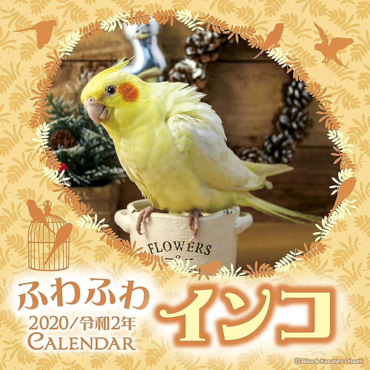 ずるいクレデンシャルクリームトライエックス ふわふわインコ 2020年 カレンダー CL-398 壁掛け 鳥