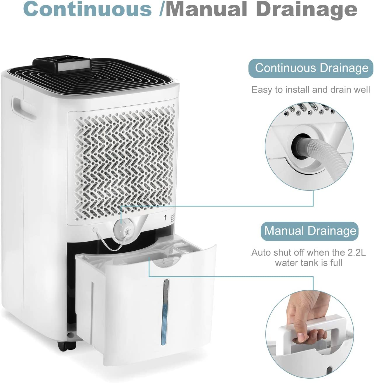 24 Hour Timer Continuous Drainage Digital Humidity Display Dry Clothes Mode HOGARLABS 12L//Day Intelligent Control Dehumidifier with Auto-Off Ideal for Home Damp and Condensation