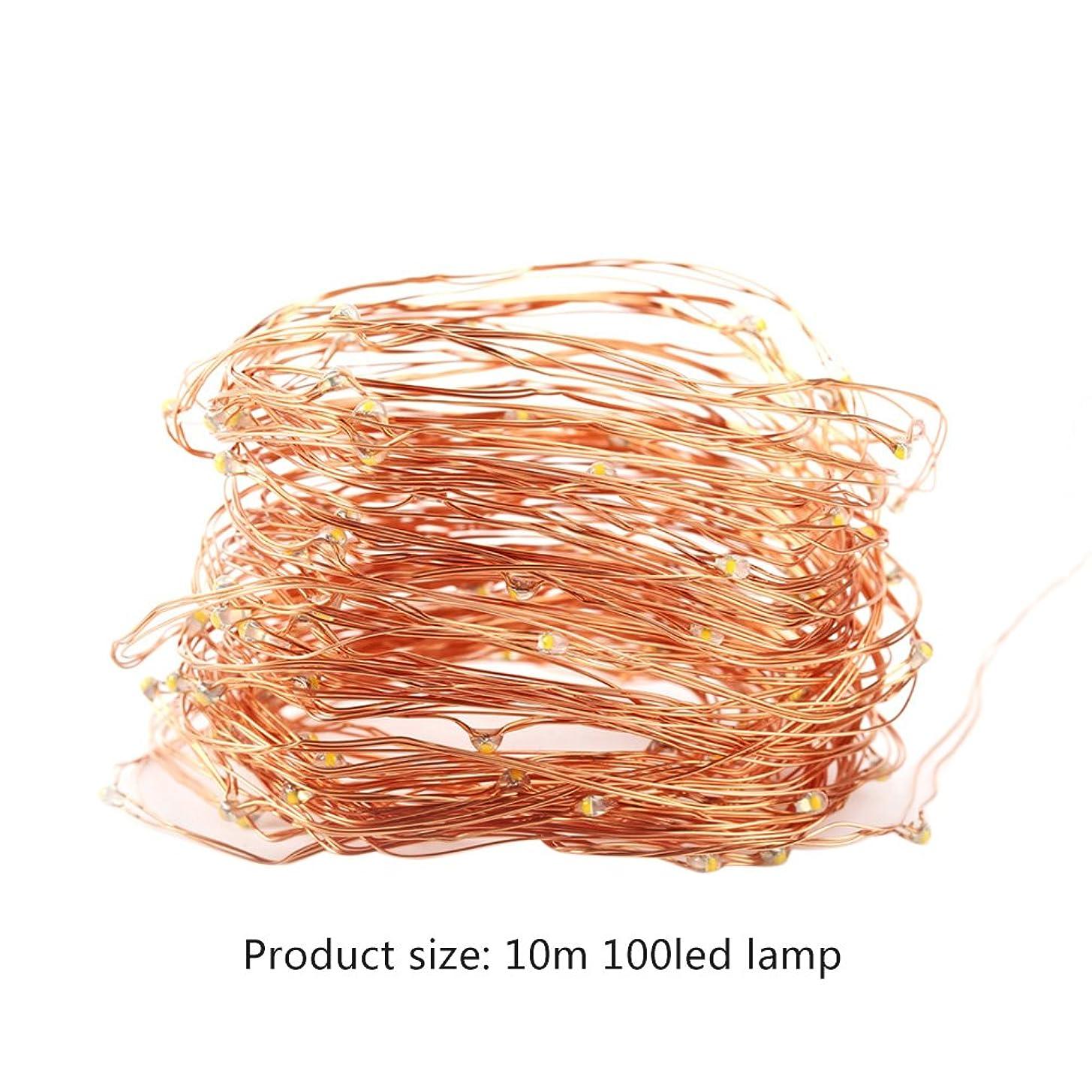 きらきらリンス楕円形Wholehot LEDイルミネーションライト USB式 10m100 LED ledストリングライト 銅線ワイヤーライト クリスマスツリー デコレーションライト クリスマス 新年 結婚式 誕生日 祝日 パーティー 店舗 部屋飾り 屋内屋外用 (電球色)