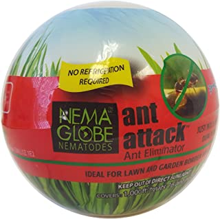 10 Million Beneficial Nematodes (S.feltiae) - Nema Globe Ant Attack Tick and Pest Control New No Refrigeration Required Formula