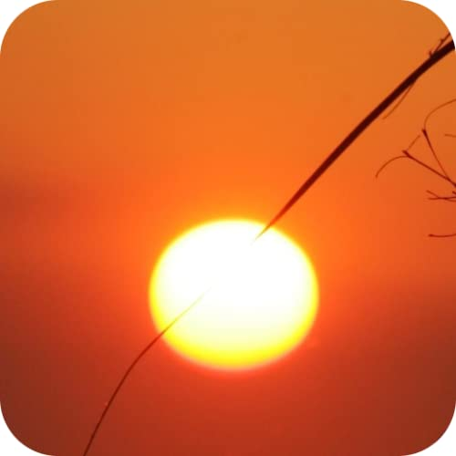 Beautiful Sunsets!!! Relax with Amazing Romantic Sunset Pictures of National Parks, Waterfalls, Flowers, Garden Pics, Sunset & Sunrise Riders Landscape, and Plants! Fun Free Wallpaper Design App for Kids & Adults!