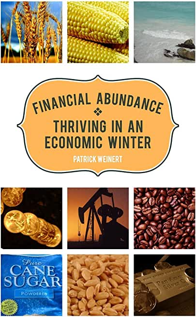 Financial Abundance: Thriving in an Economic Winter (English Edition)