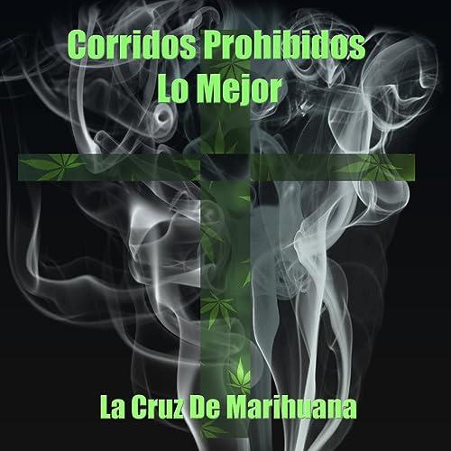 Corridos Prohibidos, Lo Mejor: La Cruz de Marihuana