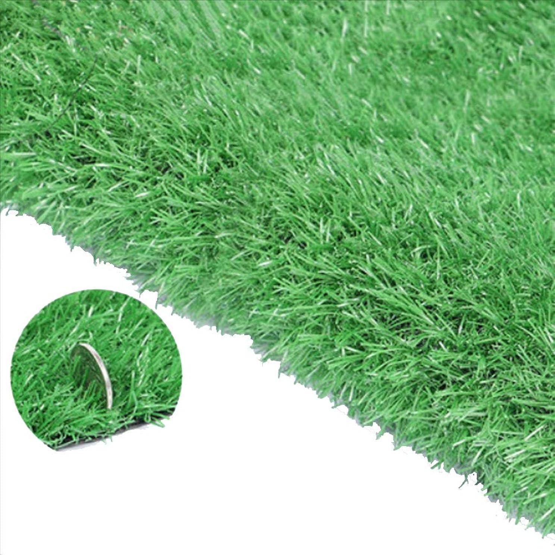 光沢のあるマウント空いているYNFNGXU 20ミリメートルパイルハイカーペット人工芝ガーデン芝生高密度ホリデー芝生、ルーフバルコニー装飾 (Size : 2x8m)