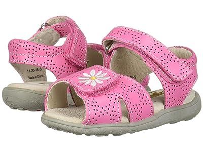 See Kai Run Kids Olivia II (Toddler/Little Kid) (Hot Pink) Girl
