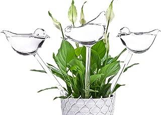 Best plant self watering bulbs Reviews