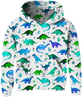Kids Hoodie Sweaters for Toddlers Girl 3t 4t 5t 6t Green Dinosaur Cute Blue White Hoody Pullover Sweatshirt 4-6Y Toddler Little Boy's Novelty Funny Lace Up Long Sleeve Winter Clothes with Big Pocket