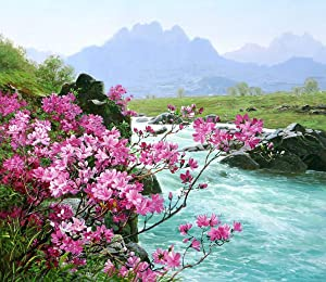 Paint by Numbers Kits DIY Painting by Numbers DIY Canvas Painting by Numbers Acrylic Painting Paint by Numbers for Adults Home Wall Decor Paint by Number Kits16x20Inch River