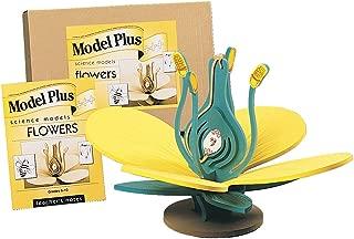 Frey Scientific Plus Foam Flower Model, 19-1/2