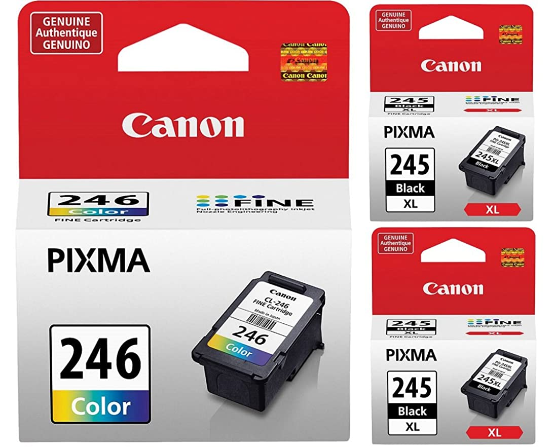 一見枢機卿クーポン純正Canon PG-245 XL 大容量ブラックインクカートリッジ - 2個 (8278B001) + Canon CL-246 カラーインクカートリッジ (8281B001)