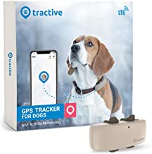 Tractive LTE GPS Dog Tracker - Location & Activity Tracker for Dogs with Unlimited Range (Newest Model), Beige (TRNJA4)