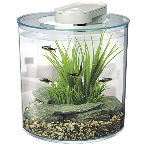 Small Fish Tanks Amazon Co Uk
