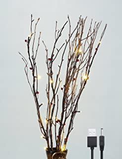 LIGHTSHARE 30Inch 20LED Natural Birch Berry Branch Light, Red Berries, Warm White Light, USB Plug-in and Battery Powered for Home Decoration.